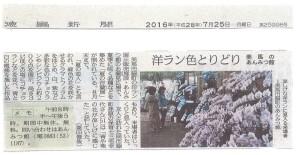 お蘭見広場[徳新]3